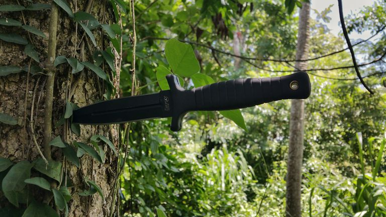 Black knife sticking out of a tree trunk.
