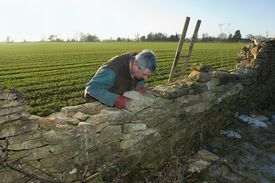 The Wall surname was sometimes bestowed on a mason who specialized in building walls.