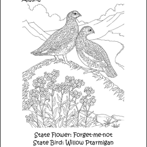 Alaska State Bird and Flower Coloring Page