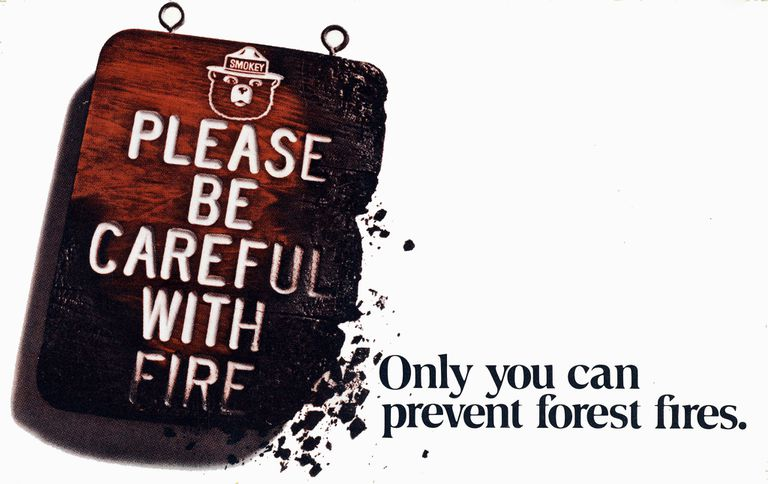 only you can prevent forest fires poster