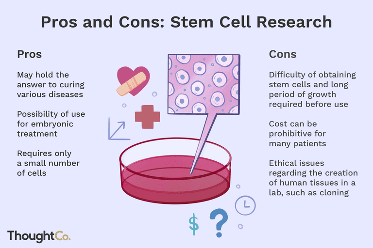 The pros and cons of stem cell research