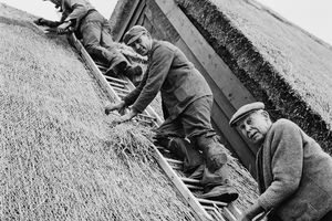 Three generations of roof thatchers pose on a ladder.