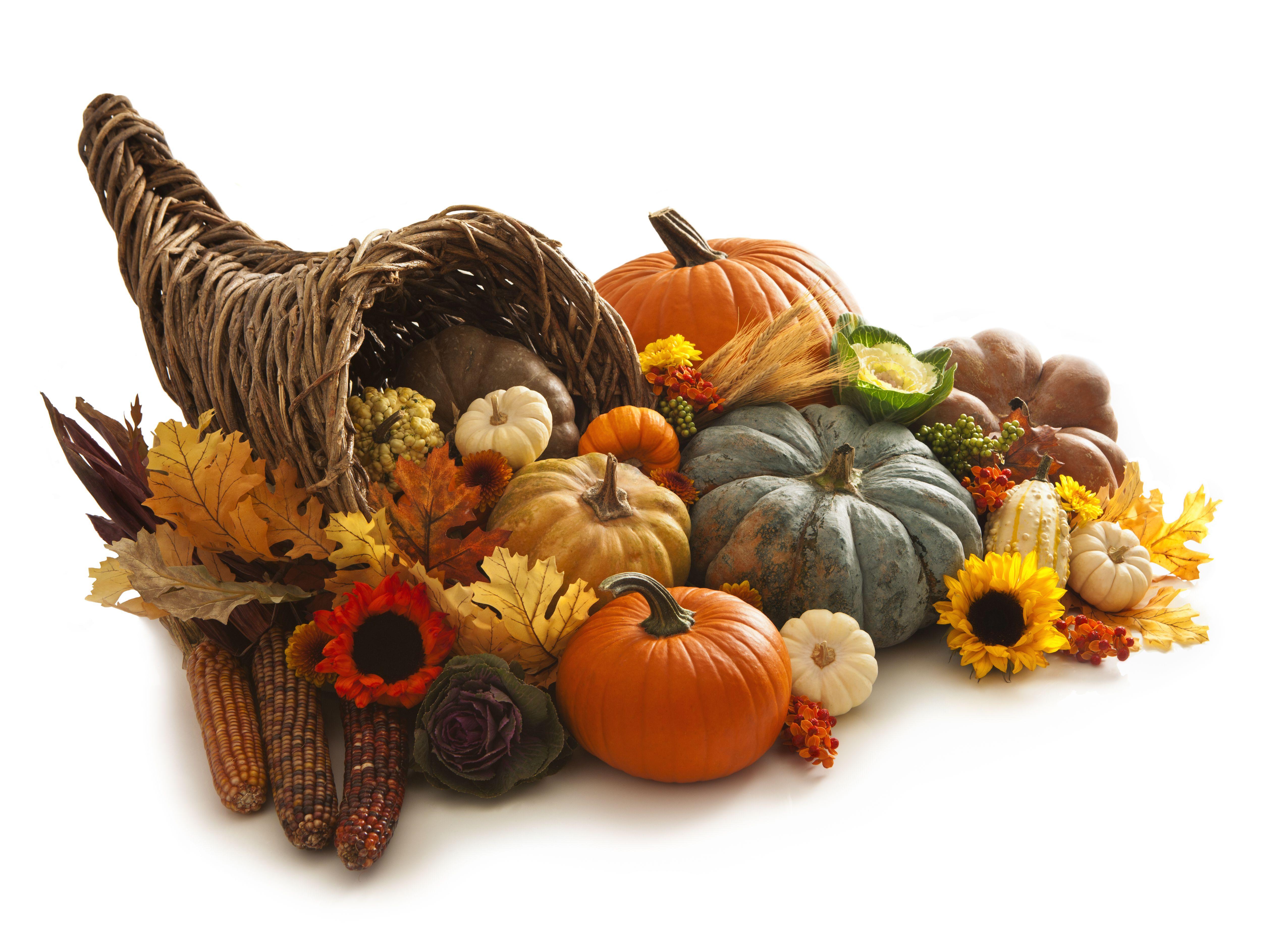 thanksgiving - photo #32