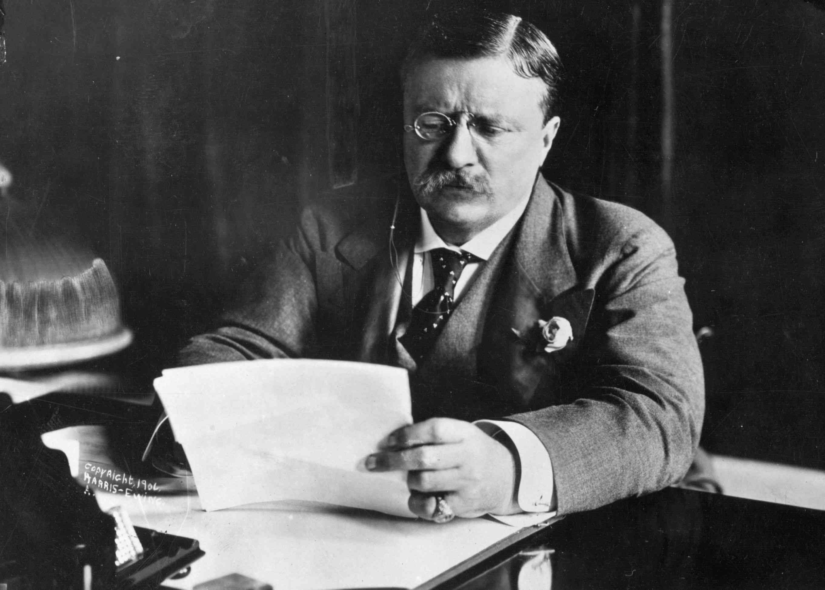 Theodore Roosevelt looking at papers at his desk