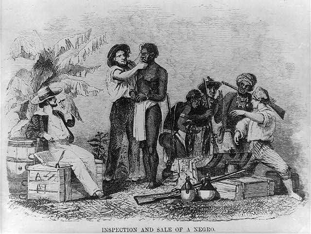 Inspection of an African Slave