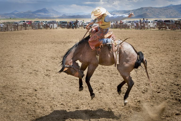 The Best Rodeos Every Fan Should See