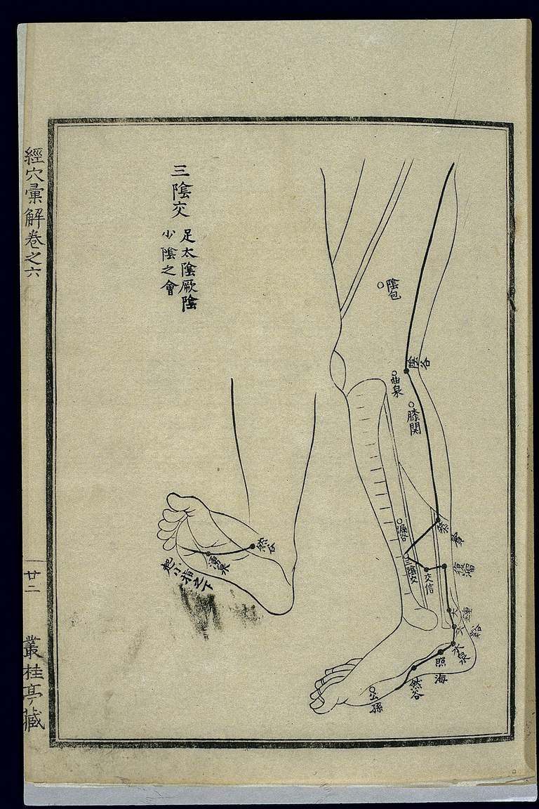 Acu-moxa chart: Kidney channel of foot shaoyin in the legs