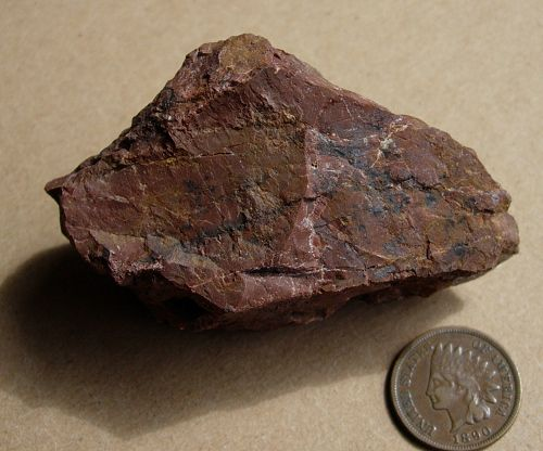 Brown chert next to a coin for scale.