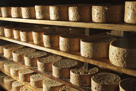 Typical cheese in Picos de Europa National Park.