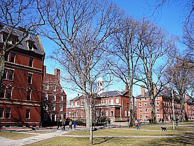 Harvard Hall and the Old Yard