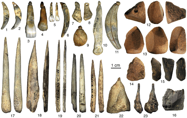 Personal Ornaments from Grotte du Renne
