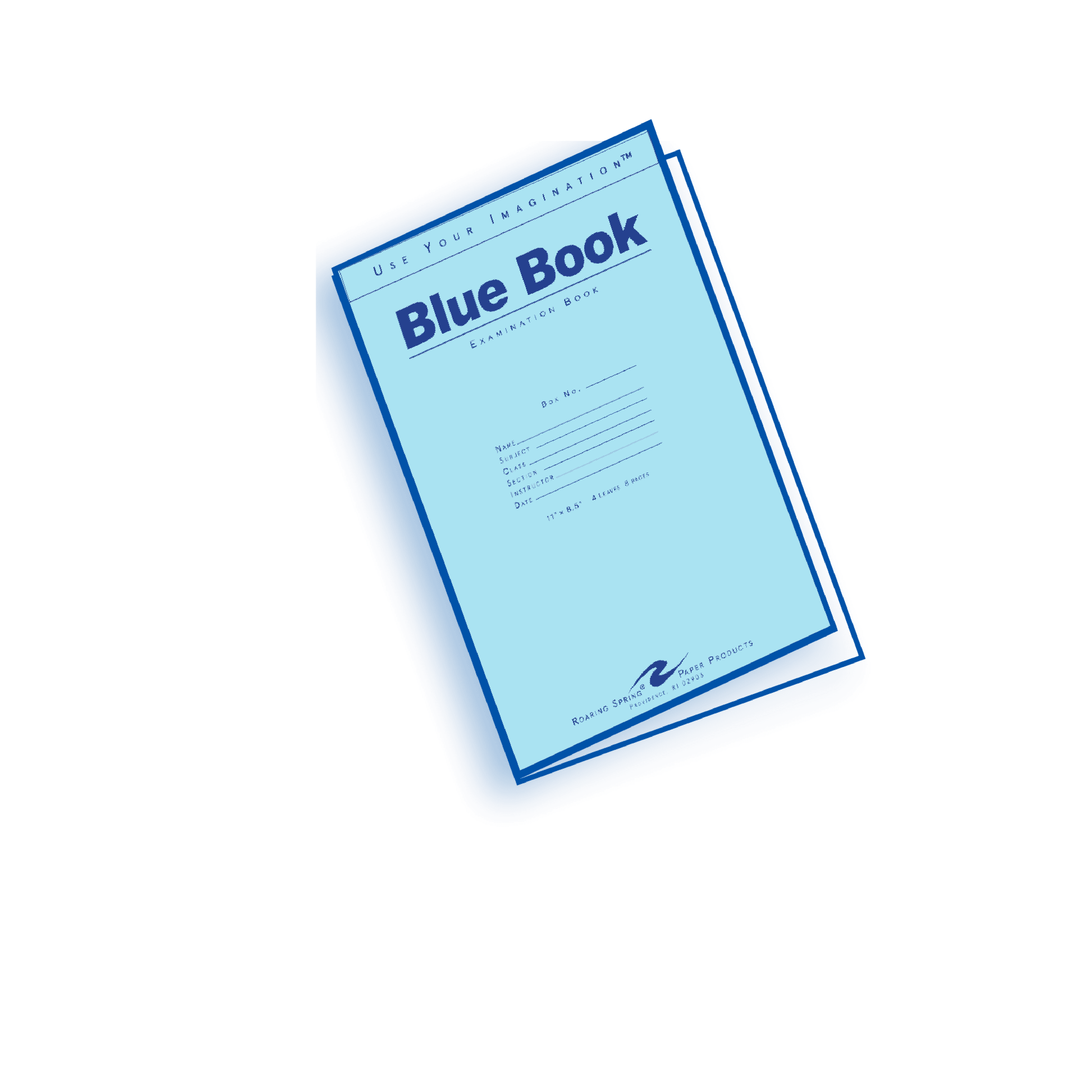 What Is a Blue Book?