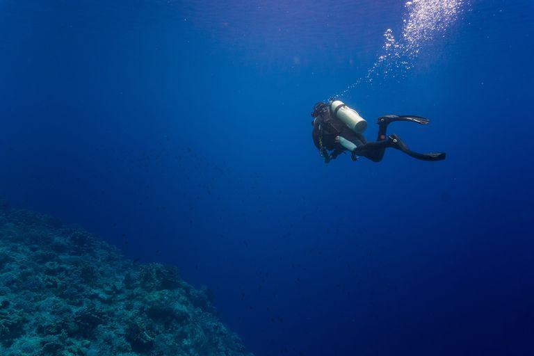 Scuba diver swimming in the sea