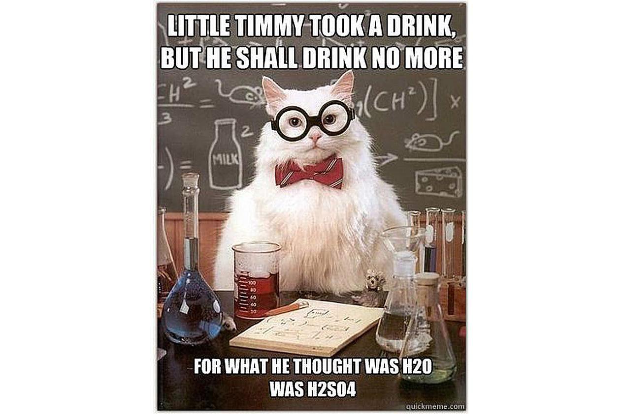 Chemistry Cat recites classic poetry.