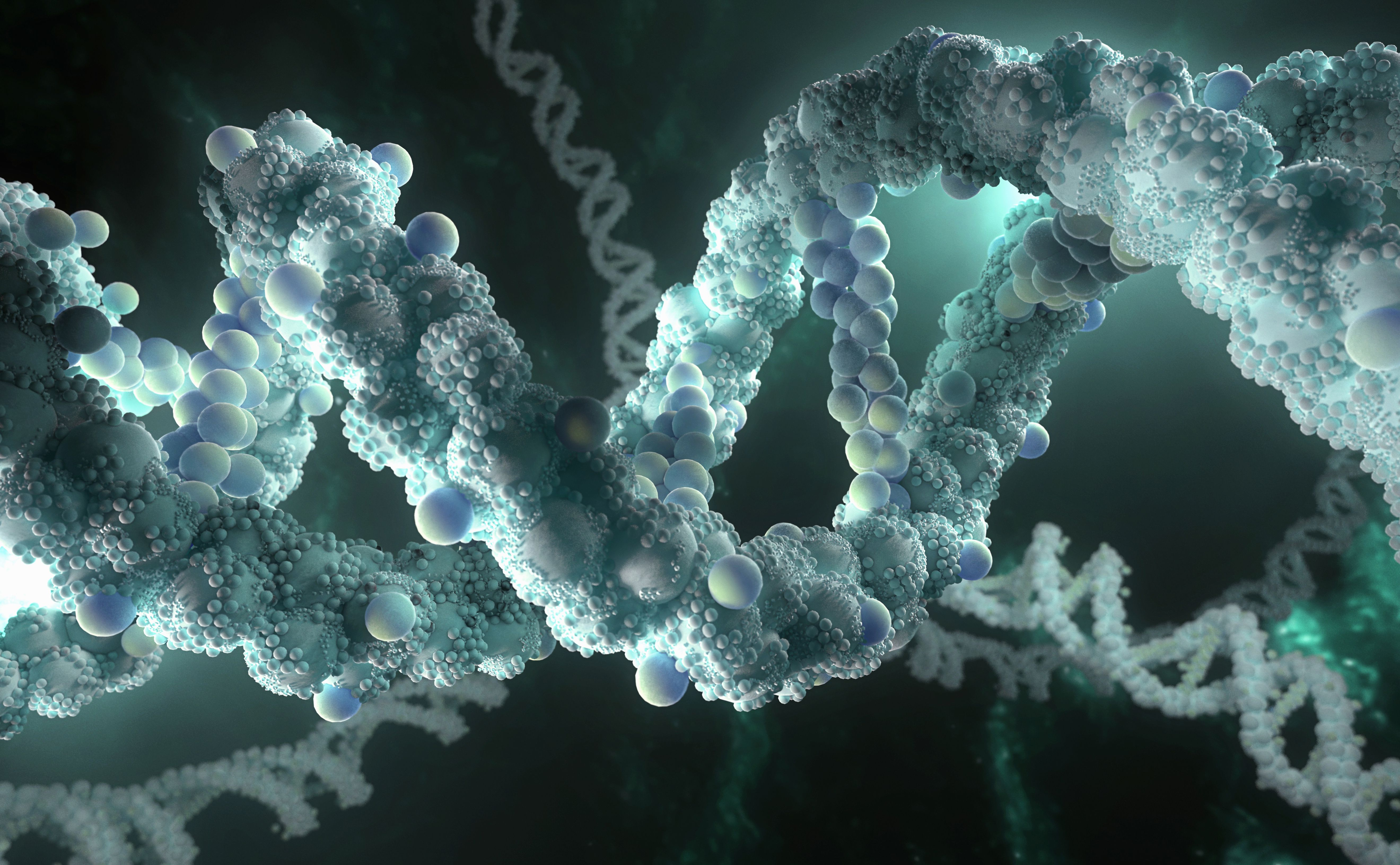 DNA may be the largest natural molecule.