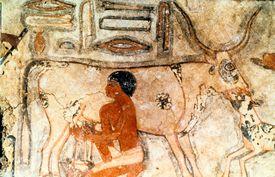 Tomb of Methethi, Saqqara, ca. 2731-2350 BC