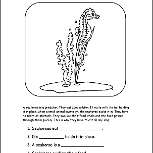 Seahorse Printables 9