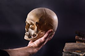 a hand holding up a human skull