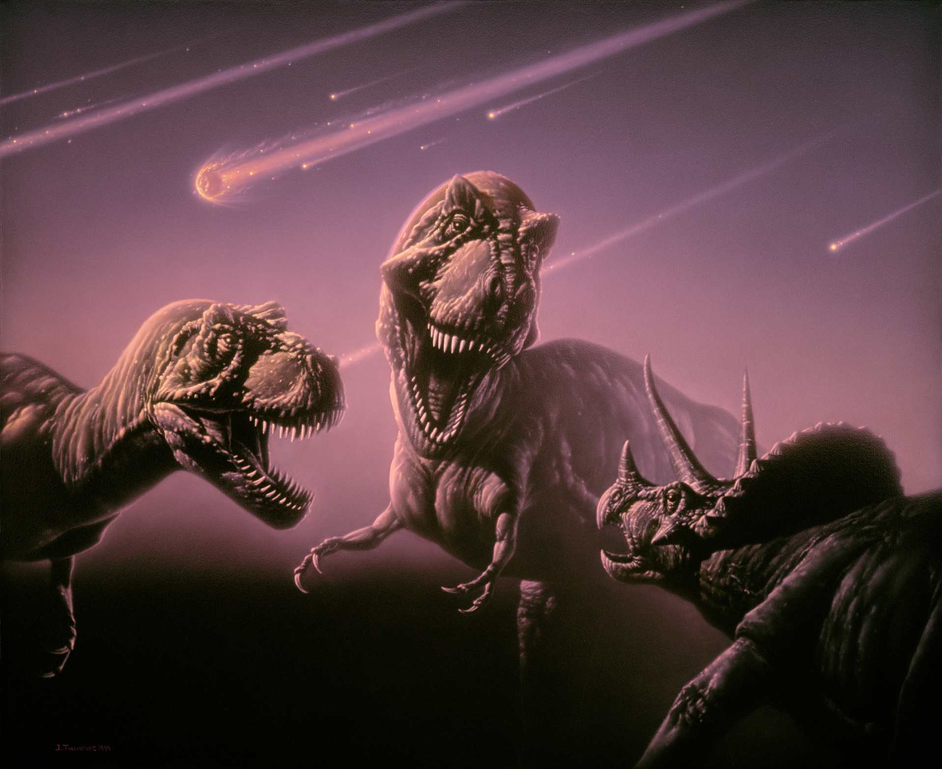 A Triceratops meets up with two hungry T. rex dinosaurs during a meteor shower