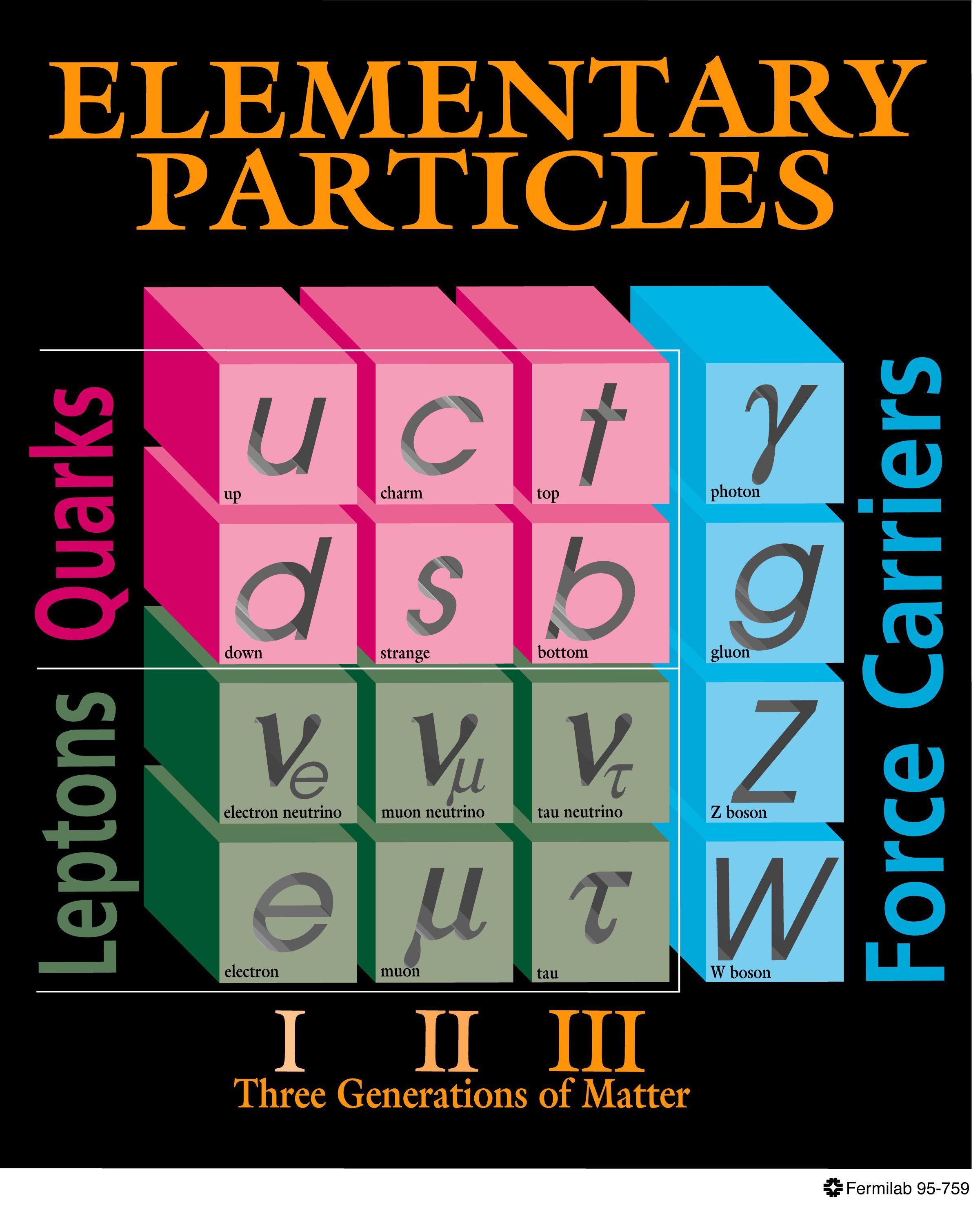 Physics: Fermion Definition