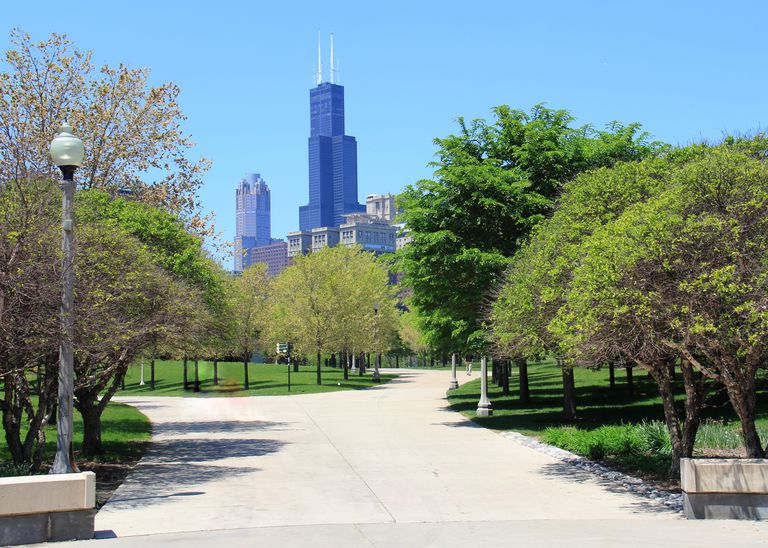 Chicago's Willis Tower seen in the distance from a Chicago park landscape