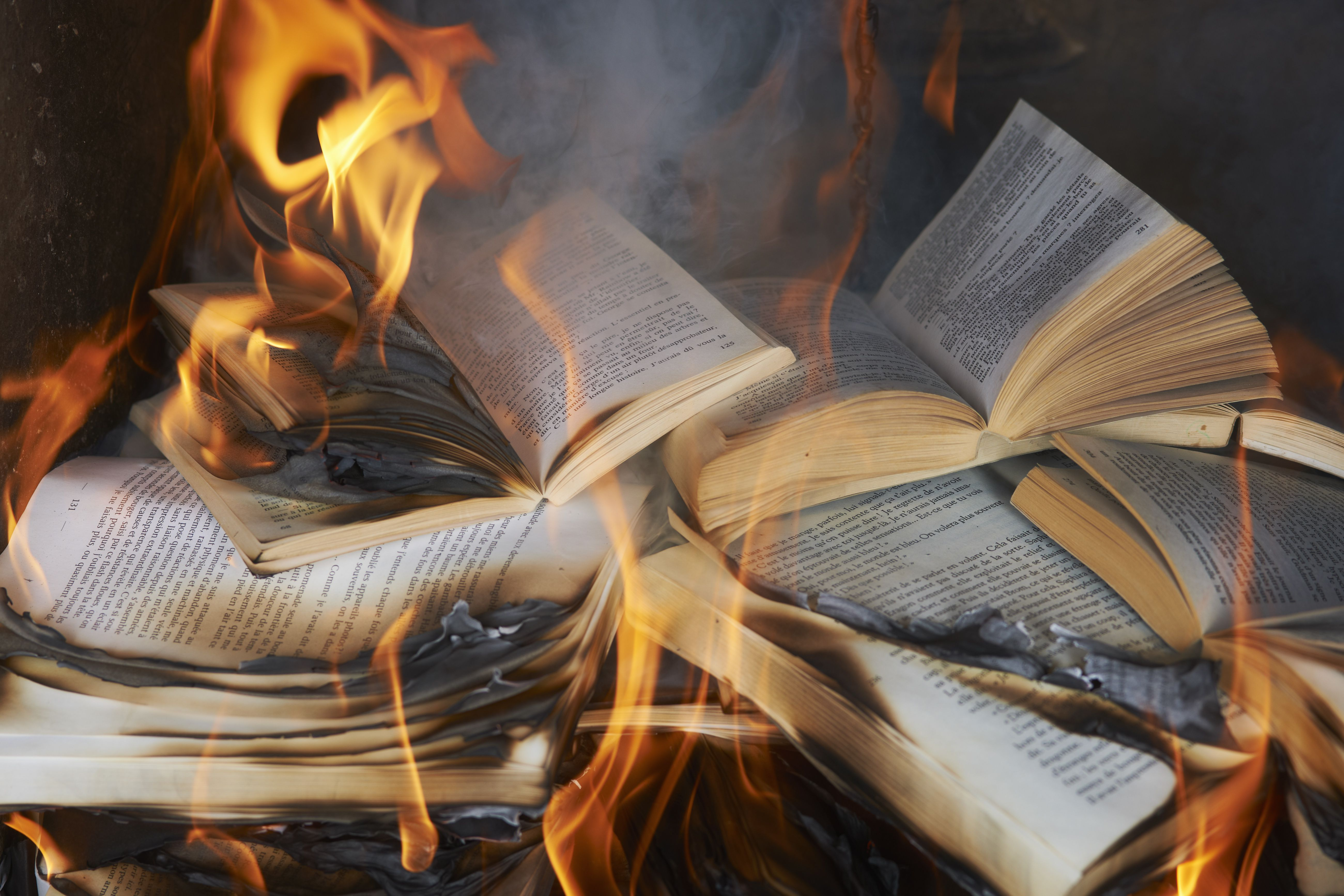 Book burnings throughout history what animals