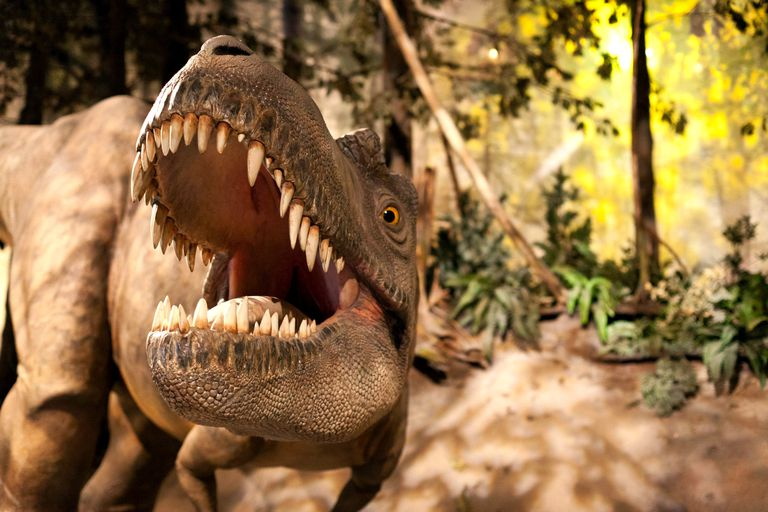 An albertosaurus model appears to roar