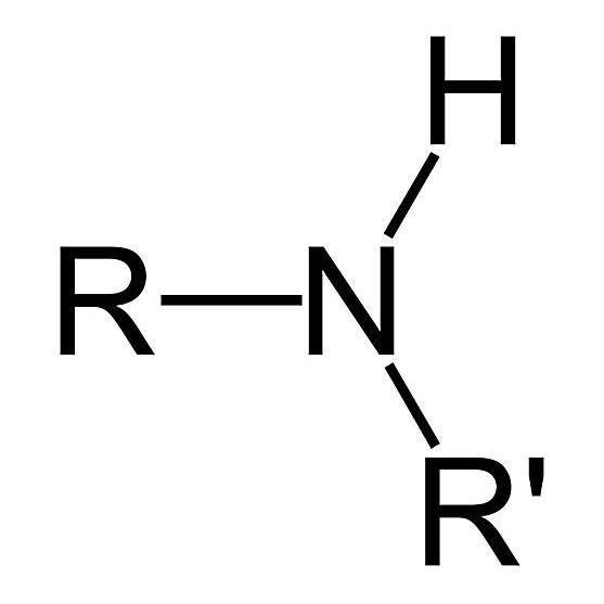 Un grupo de amina secundaria es un tipo de amina.