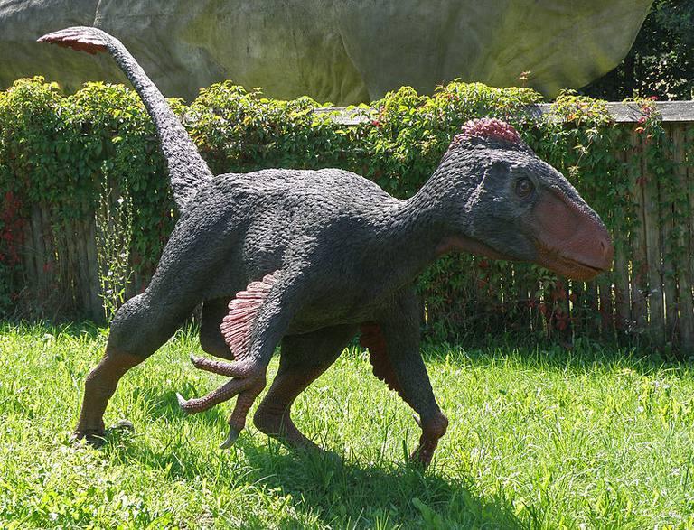 10 Facts About Utahraptor, the World's Biggest Raptor