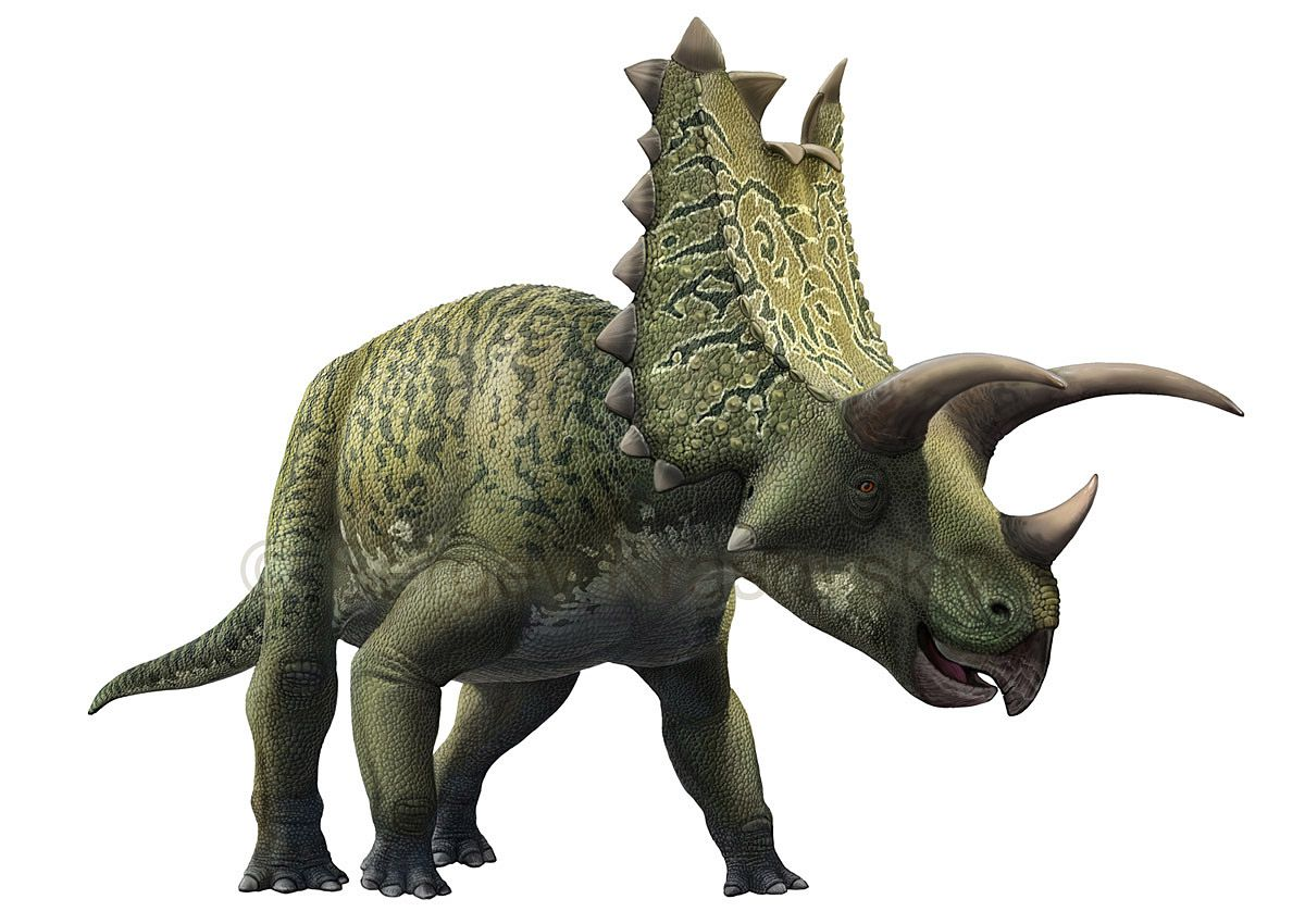 10 Famous Horned Dinosaurs That Weren't Triceratops