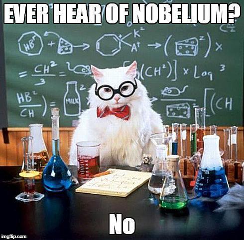 Chemistry cat denies knowing about nobelium.