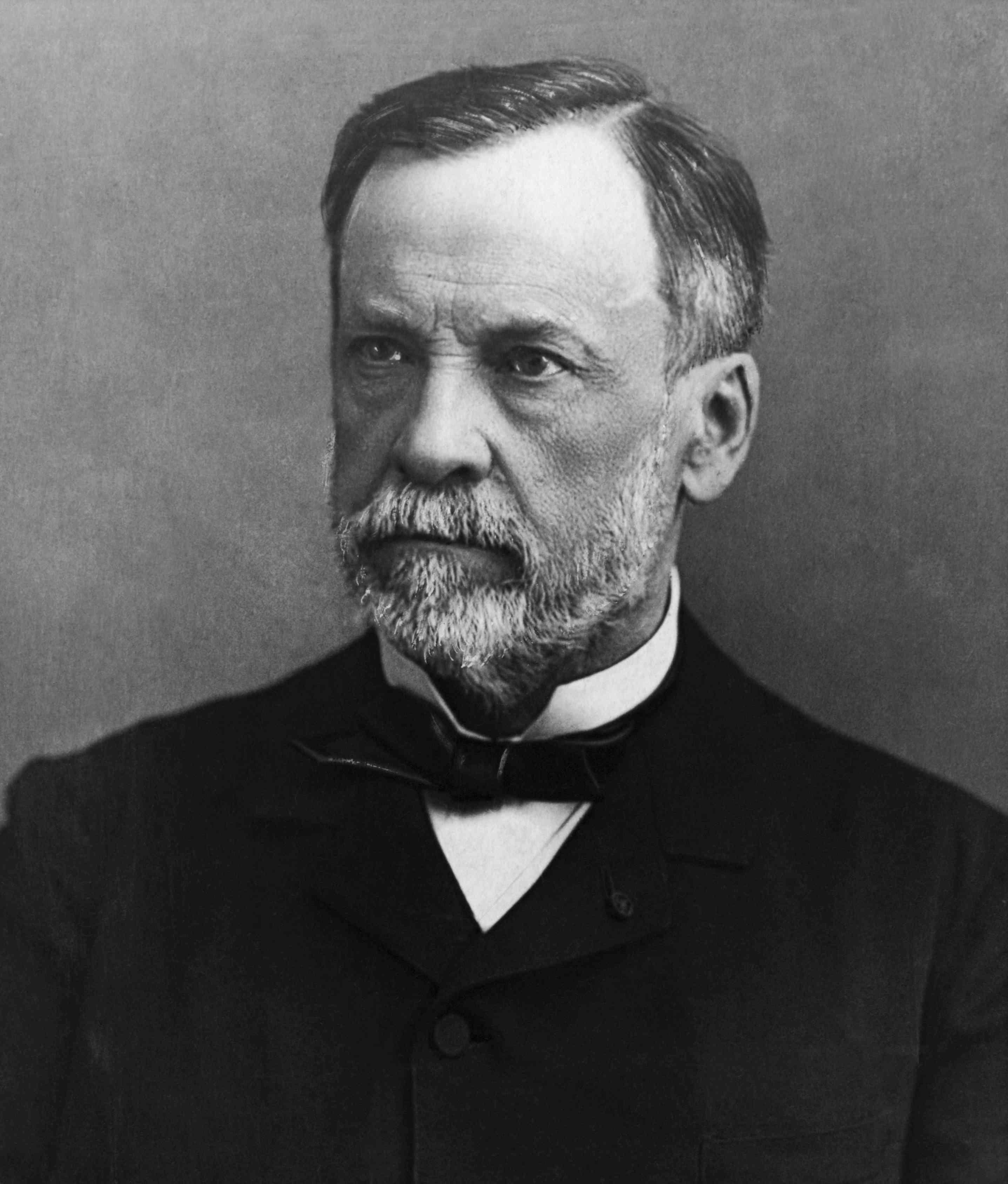 Scientist Louis Pasteur