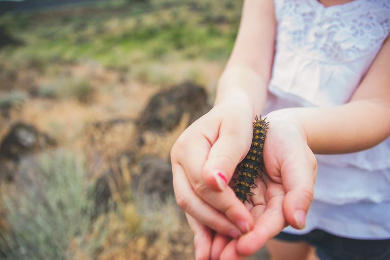 Girl holding a caterpillar.