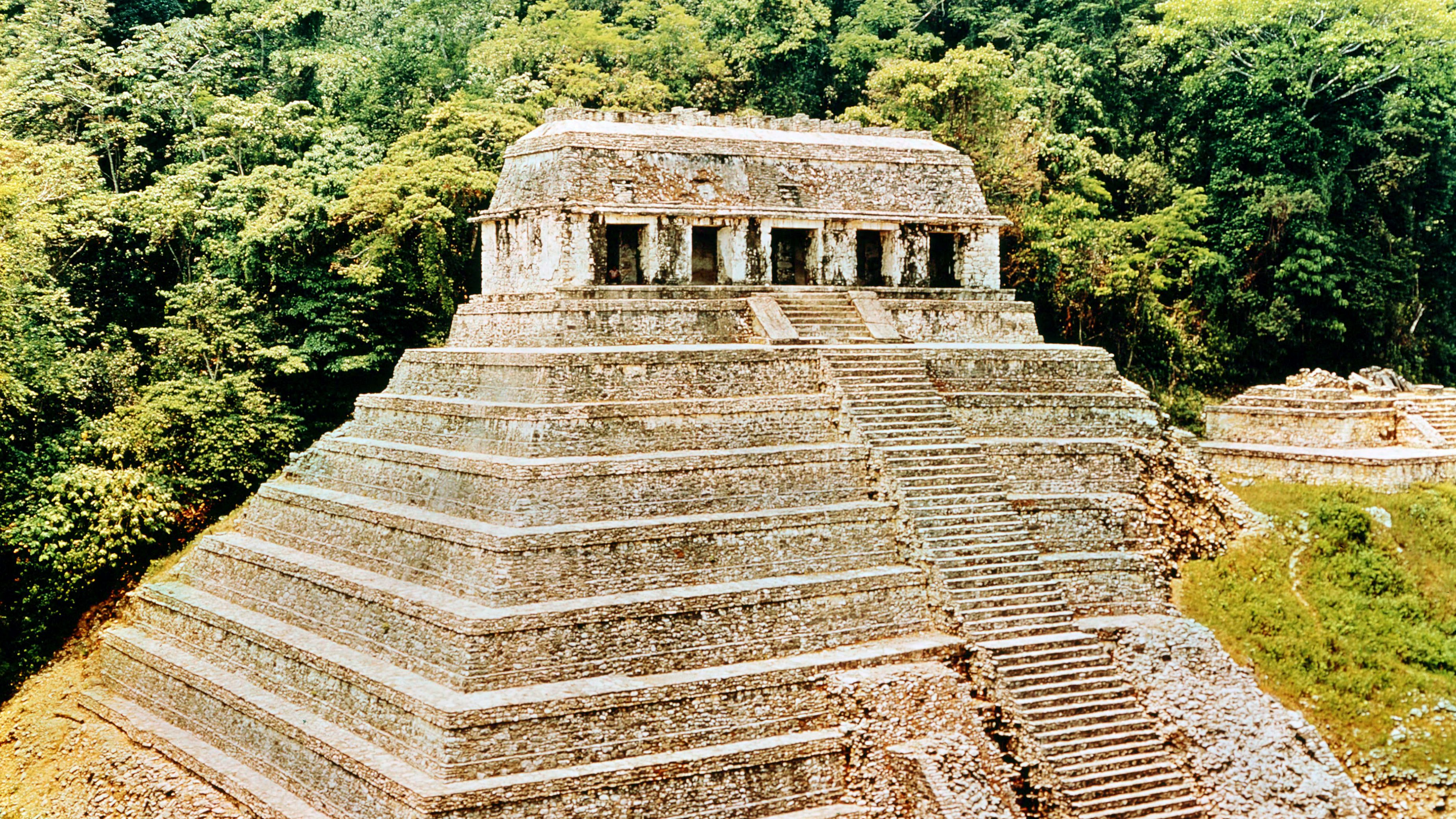 Death and the Classic Maya Kings