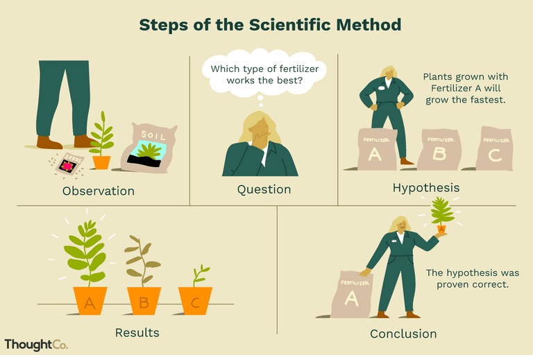 Scientific Method: Definition and Examples
