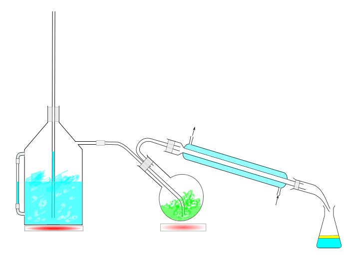 Steam Distillation Definition In Chemistry