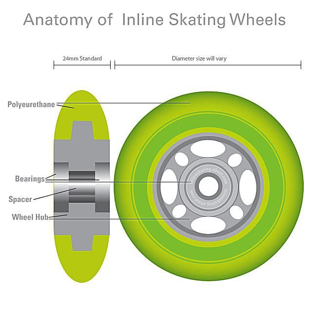 Inline Skate Wheel Anatomy