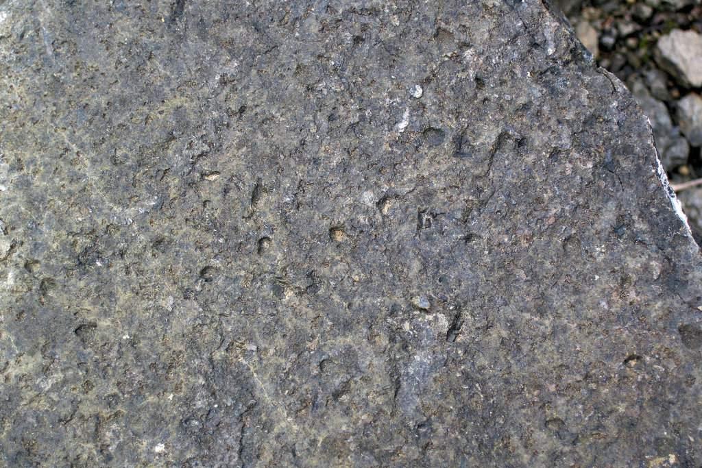 Vesicular olivine diabase (Lafayette Bluff Sill, Proterozoic; Lafayette Bluff Tunnel, northeastern Minnesota, USA)