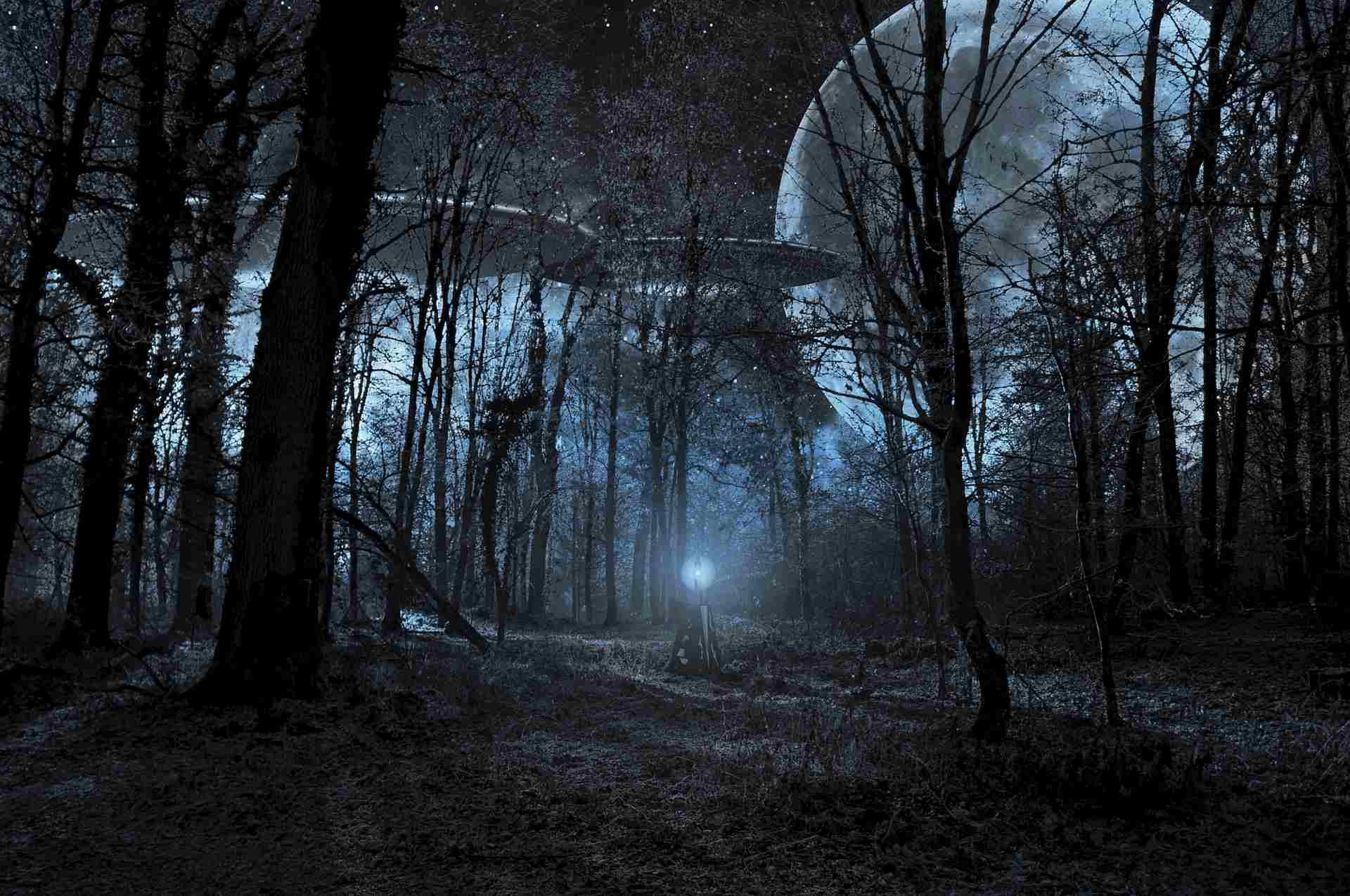 Artist rendering of alien spacecraft in a forest.