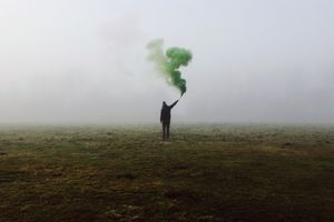 Smoke bombs are usually non-toxic. The biggest risk comes from burns.