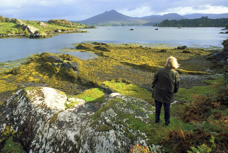 Inlet of the Kenmare, Ardgroom, Ring of Beara