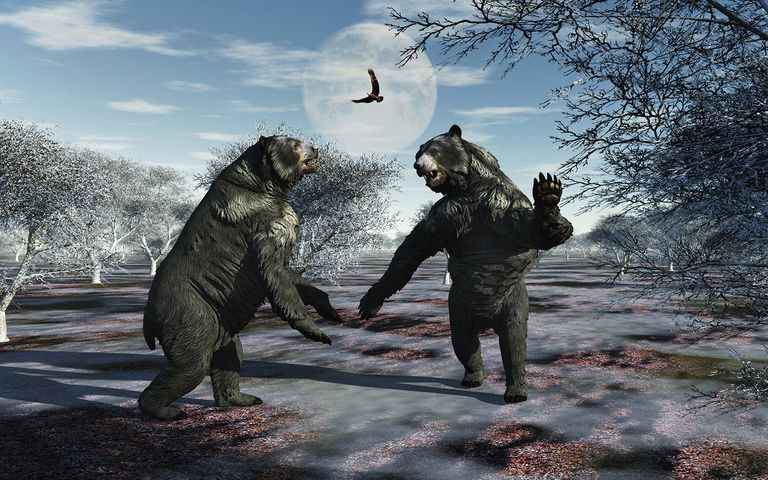 Arctodus Bears in a Territorial Dispute