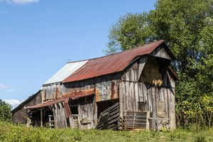 Dilapidated shed in a grassy field