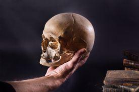 hamlet scene hand holding skull