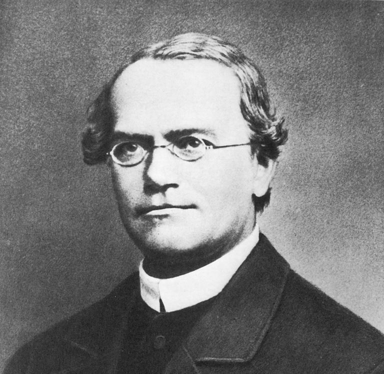 Black and white photograph of Gregor Mendel