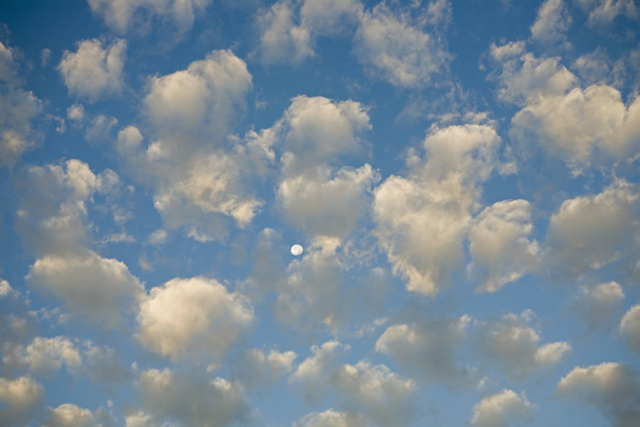altocumulus and the moon