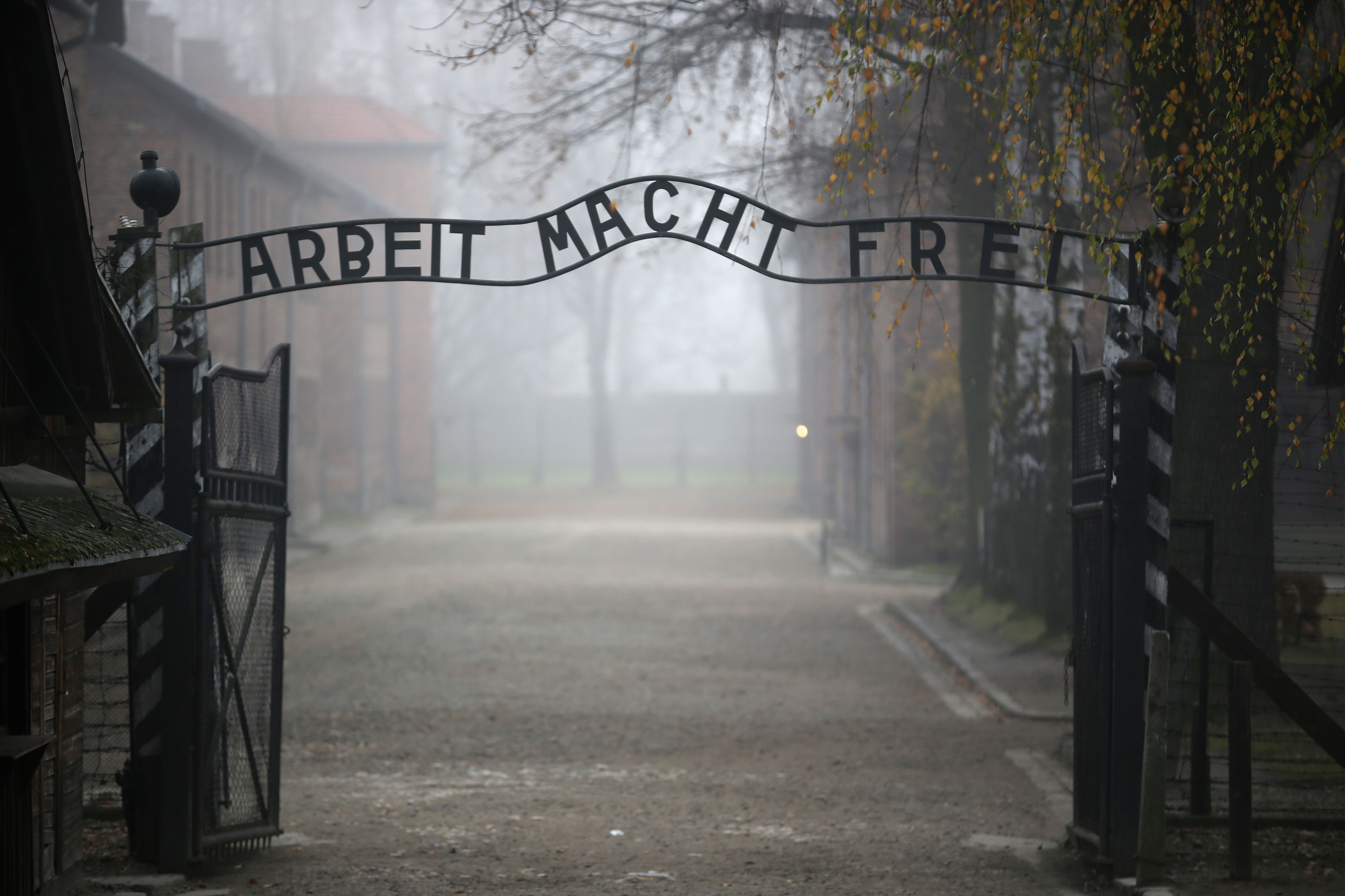 Facts You Should Know About the Holocaust