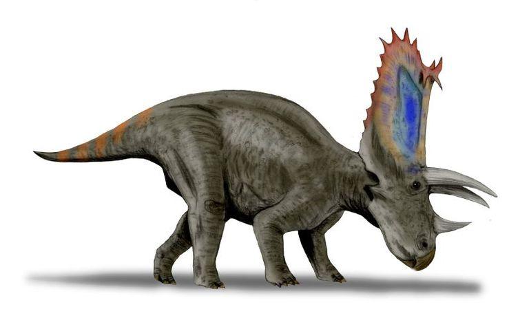 pentaceratops graphic rendering