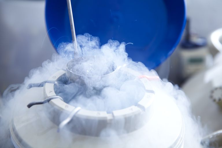 Liquid nitrogen is a good example of a cryogenic fluid.