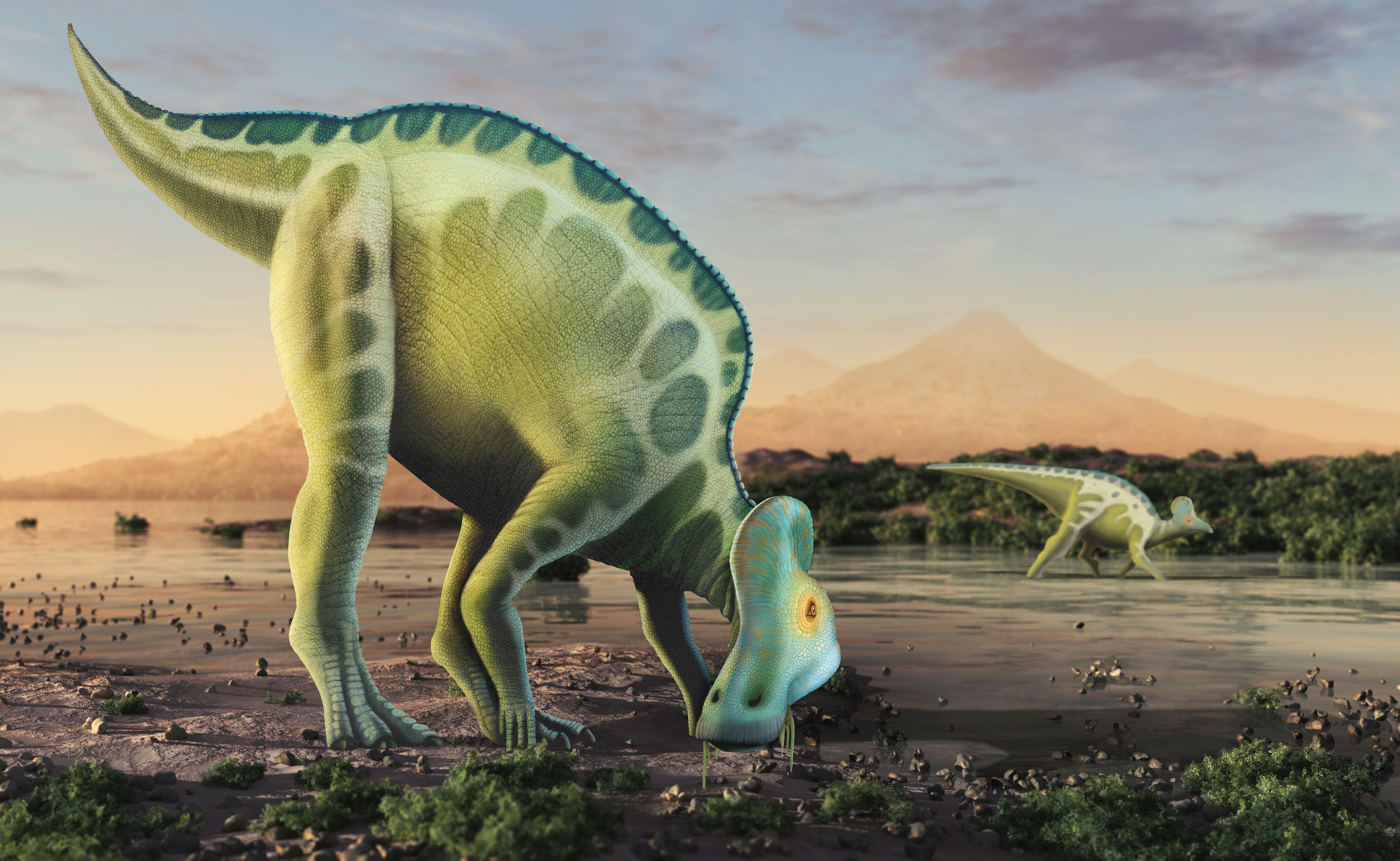 Colorful illustration of a hardosaurid in its natural habitat.